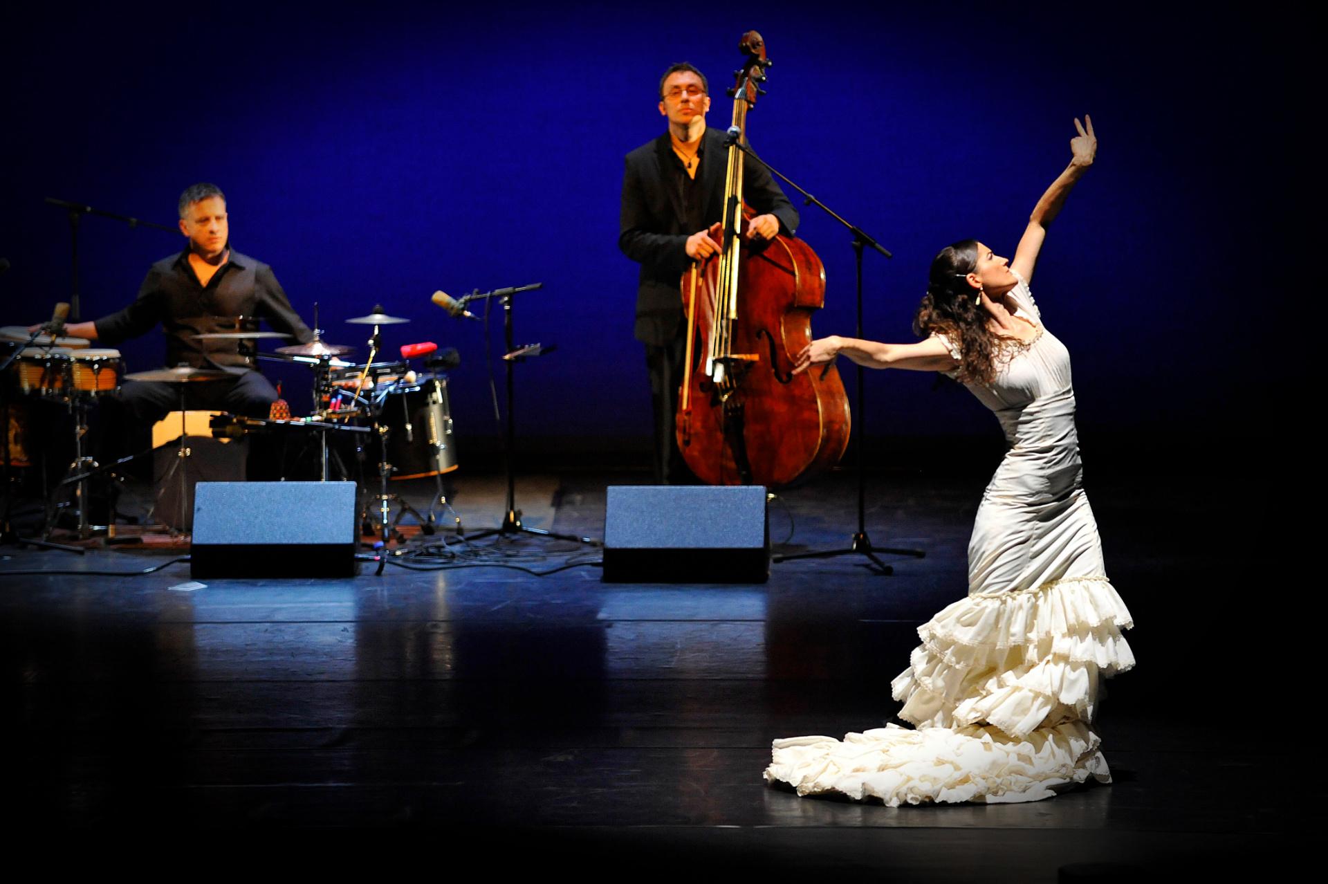 Sybille Märklin und Ensemble madrugá flamenca